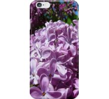 Purple Flowers Cover iPhone Case/Skin