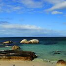 Boulders Beach,  South Africa by Jennifer Sumpton