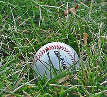 Baseball in Grass by vlwinphoto