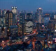 nighttime urban osaka by photoeverywhere