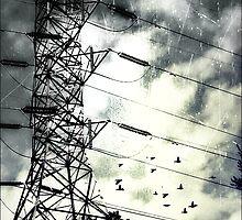 Fleeing the Storm by Scott Mitchell