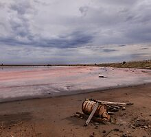 Pink Lake by sedge808