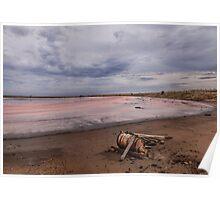 Pink Lake Poster