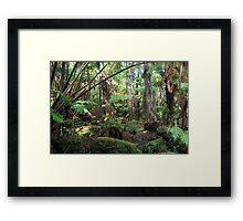 hawaiian tropical plants Framed Print