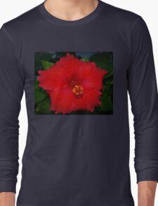 Pentagonal hibiscus Long Sleeve T-Shirt