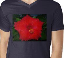 Pentagonal hibiscus Mens V-Neck T-Shirt