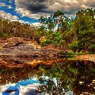 Cooby Water Hole... by Tracie Louise