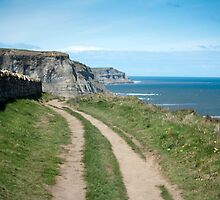 Cleveland Way track by photoeverywhere