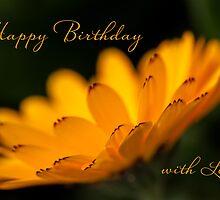 Calendula aglow - birthday by Celeste Mookherjee