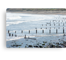 Coastal defenses Canvas Print