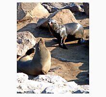 Seals, Cape Cross, Namibia Unisex T-Shirt