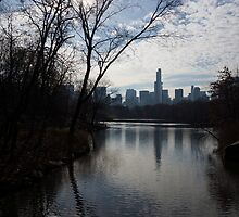 New York City Central Park Reflections, Ripples and Shine by Georgia Mizuleva