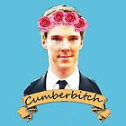 Cumberbitch ipad case by potatopuff