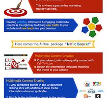 Promote Your Business via Social Media Marketing Campaign by Infographics