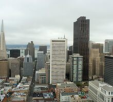 downtown san francisco by photoeverywhere