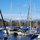 A Trot of Yachts - Windermere by Francis Drake
