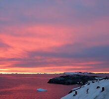 Antarctica by Robert Elliott