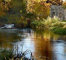 Autumn Refuge by Samantha Higgs