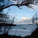 Natural Window - Harlyn Bay - Cornwall by Samantha Higgs