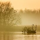 Stodmarsh by Ian Hufton