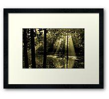 Morning in Bucklebury Framed Print