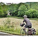Cycling in France - near a field by Marlene Hielema