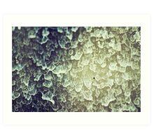 Window Rain  Art Print