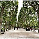 Paris - Jardin des Plantes by Marlene Hielema