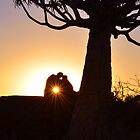 Sunset Lovers by ©   Elaine van Dyk