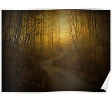 Foggy Morning in the Mountains Poster