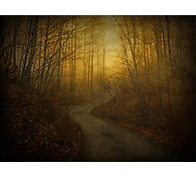 Foggy Morning in the Mountains Photographic Print