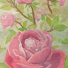 Watercolor Roses by pawtucketpat725