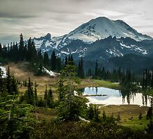 Lake Tipsoo with Mt. Rainier  by James Duffin