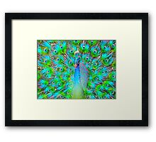 Light From Within (Neon Peacock) Framed Print