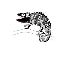 graphic ornamental chameleon Photographic Print