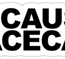 Because Racecar! Sticker