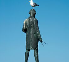 captain cook seagull by photoeverywhere