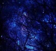 Esprit Of Galaxy by tropicalsamuelv