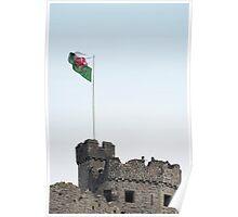 welsh red dragon flag Poster