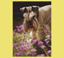 Schnauzer in Wildflowers 2 Baby Tee