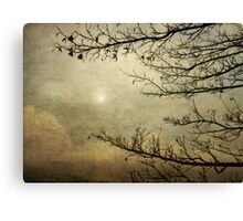 The Journey Towards Spring Canvas Print