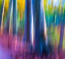 Abstract Nature by Tess Masero Brioso