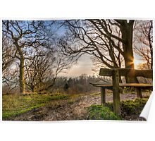 Sunny bench Poster