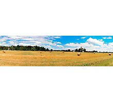 Panorama_Mown field Photographic Print