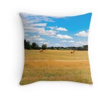 Panorama_Mown field Throw Pillow