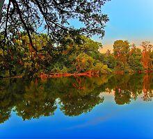 Summer evening on a quiet river by Benjamin Gelman