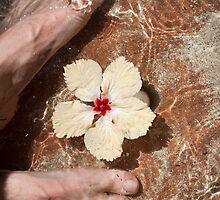 Fijian foot bath by photoeverywhere