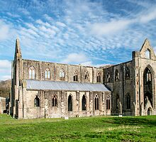 Tintern Abbey by Nick Jenkins