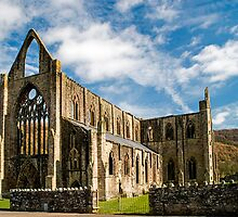 Tintern Abbey by Nick Jenkins