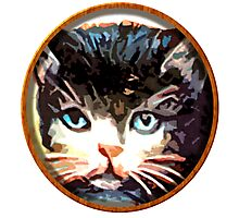 meow face Photographic Print